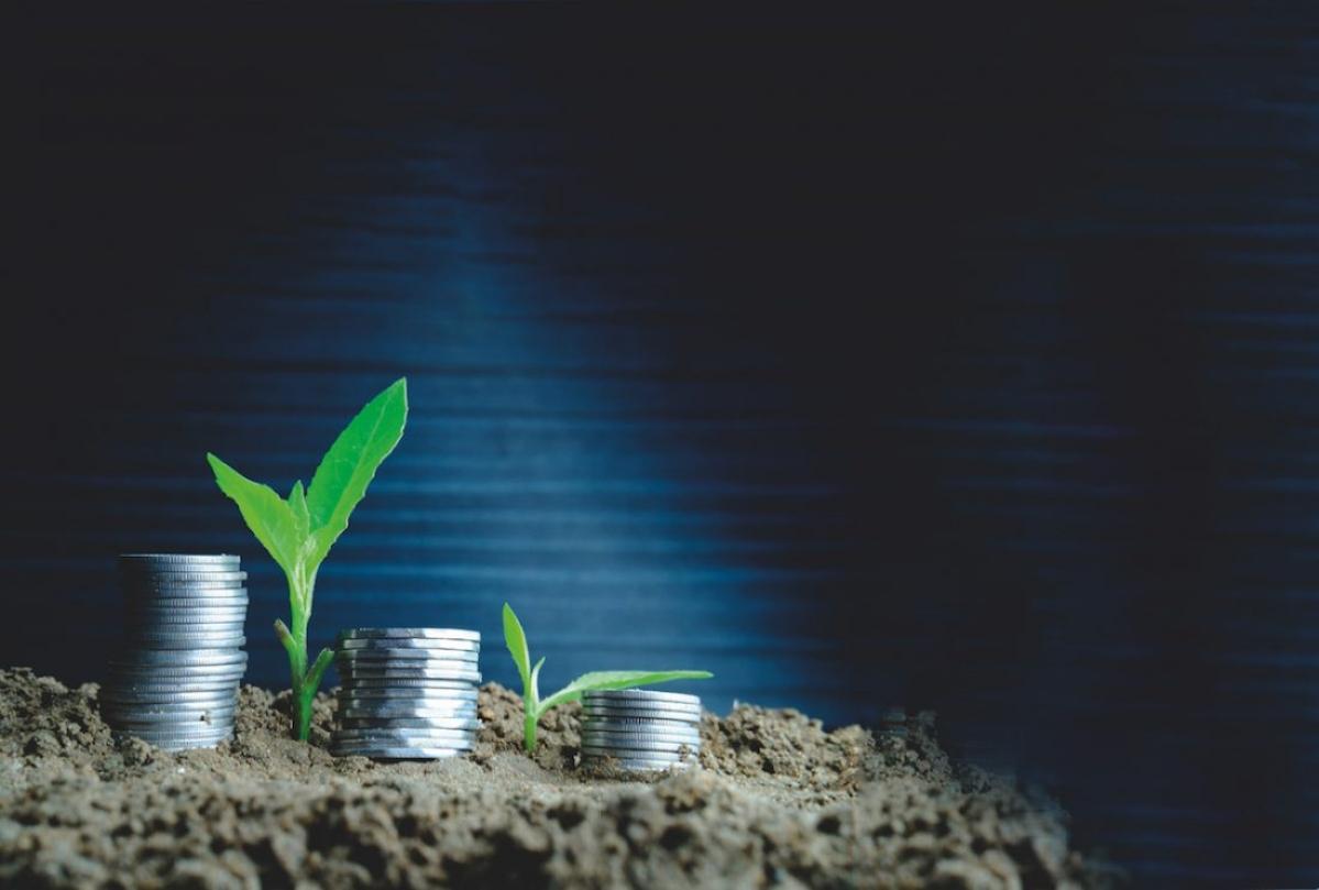 Smart Investor In 100 Days