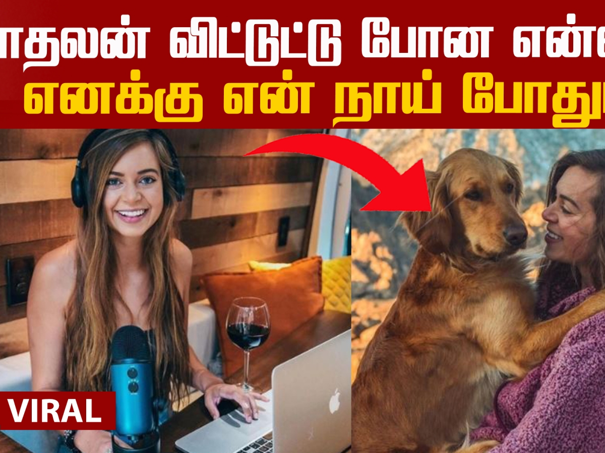 Sydney Ferbrache's travelling experience with her dog!