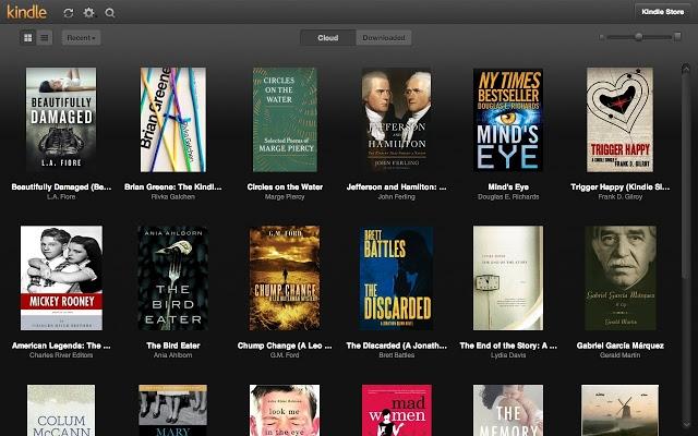 Kindle Page