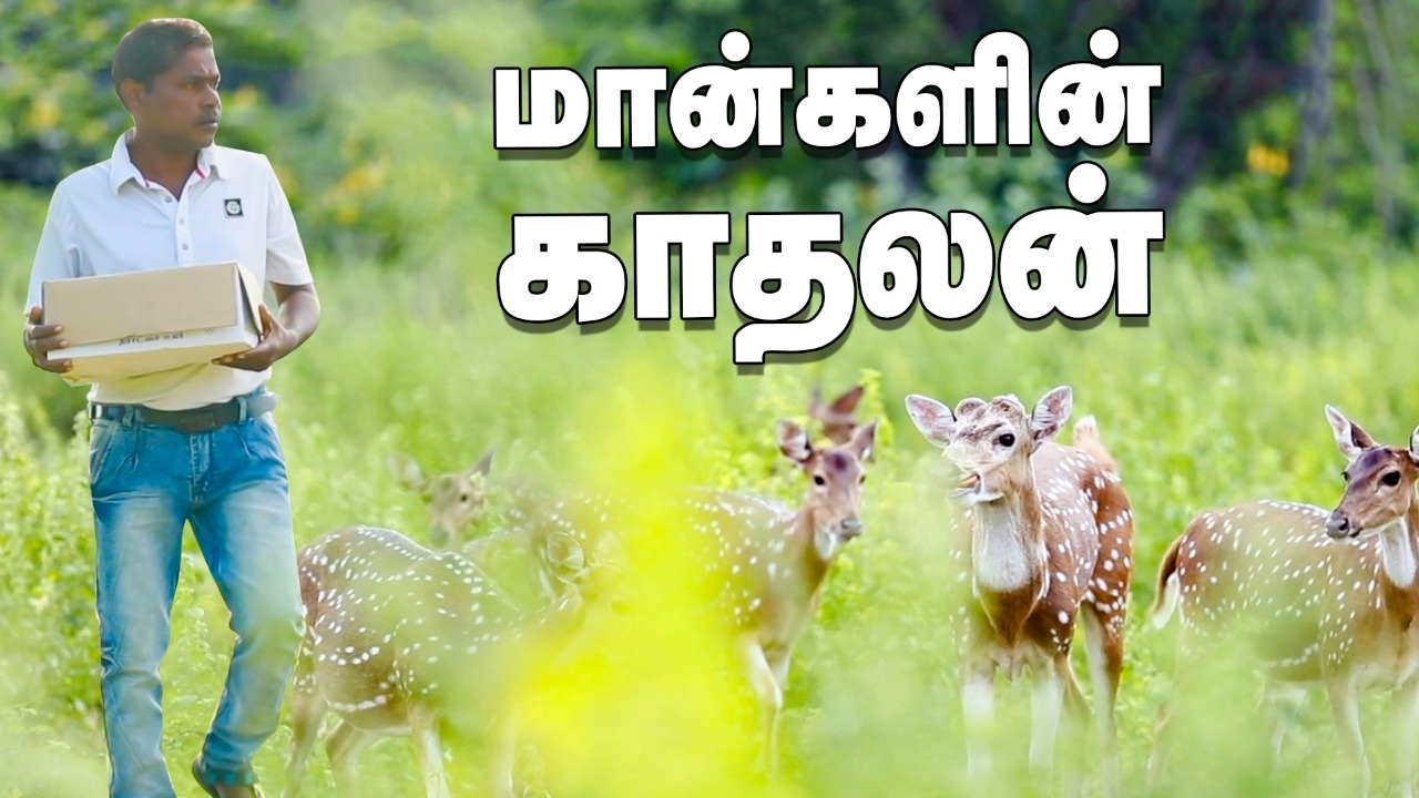 A Man's Wonderful initiative to save the life of Deer!   Human Story